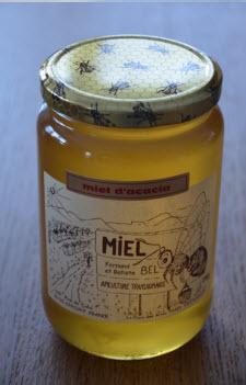 miel d'acacia puceron